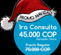 oferta promo navidad 45k COP